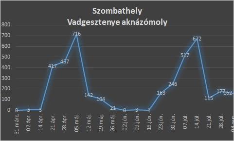 Rajzási táblázatok 2020.08.06.