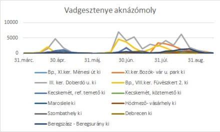 Rajzási táblázatok 09.18.